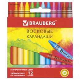 """Восковые карандаши BRAUBERG """"АКАДЕМИЯ"""", 12 цветов"""